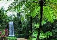 atherton-tablelands-waterfall